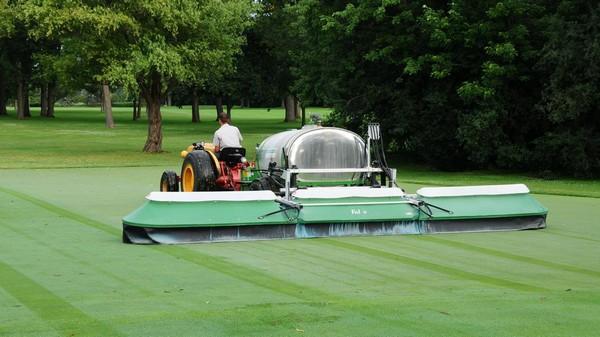 Kỹ thuật trồng cỏ sân golf - kỹ thuật chăm sóc cỏ sân golf tiêu chuẩn
