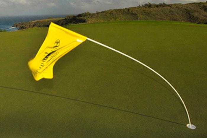 Hướng dẫn kỹ thuật đánh golf xa khi gió to
