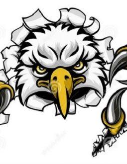eagle callaway và green fee trong golf là gì