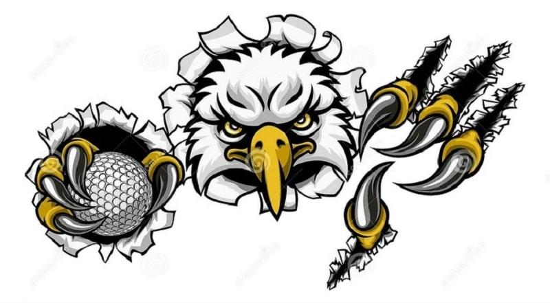 Eagle được bắt nguồn từ thuật ngữ Birdie golf của Mỹ