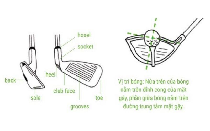 Gậy golf nặng bao nhiêu phụ thuộc vào chất liệu thiết kế các bộ phận
