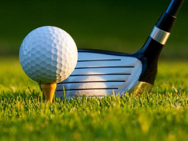 Một golfer cần đánh bóng từ tee box - nơi xuất phát để bóng rơi và green