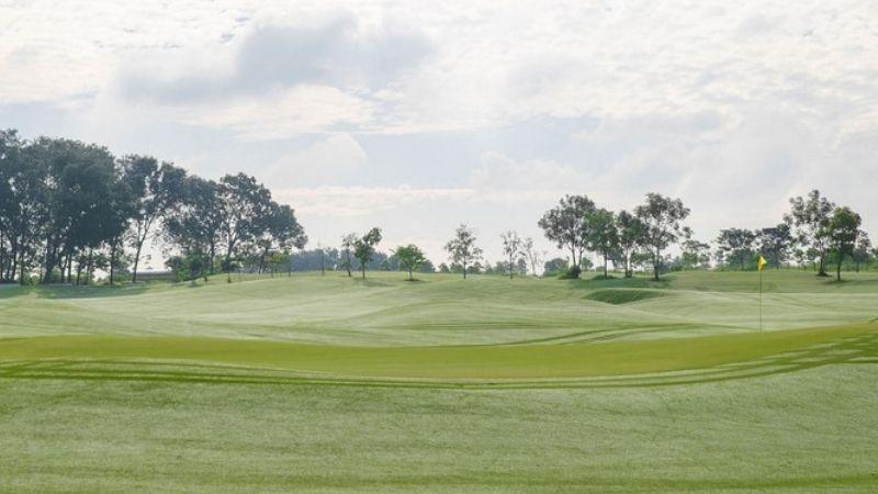 Giới thiệu về sân golf Harmonie Golf Park