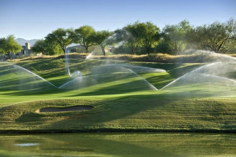 Tưới nước đúng cách để cấp ẩm cho đất nuôi dưỡng cỏ
