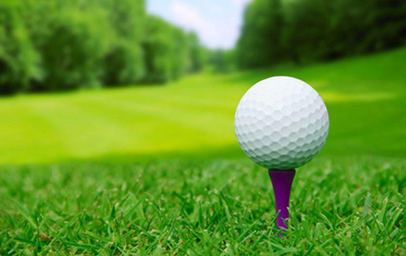 Bóng golf 1 lớp được cấu tạo từ Surlyn
