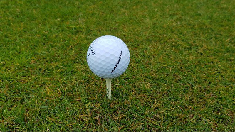 Bóng golf Callaway Warbird là dòng bóng 2 mảnh có khả năng cải thiện khoảng cách và tốc độ tối đa