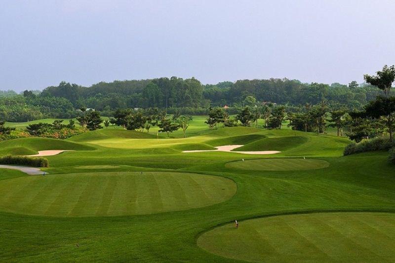 Sân golf Paradise Vũng Tàu được phủ một màu xanh tuyệt đẹp