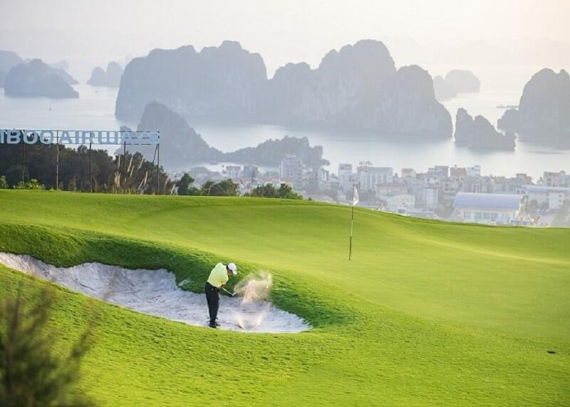 Tập đoàn FLC đã xây dựng khoảng 29 sân tập golf trên khắp cả nước