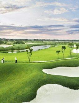 Tìm hiểu về sân golf Vinpearl hải phòng