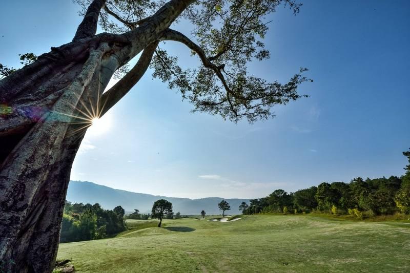 Sân golf Đà Lạt 1200 nằm ở độ cao 1200m so với mực nước biển